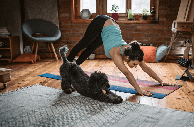 Skills To Look For In A Pilates Inspector